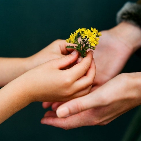 Craig Fordham hands holding yellow flowers photograph